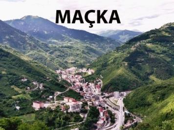 Araştırma ve İnceleme │ Bosna Hersek Edebiyatı │ Nedzad Ibrisimovic